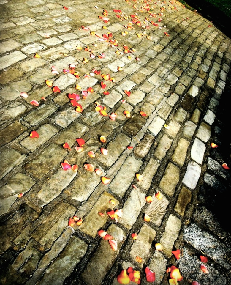 stone-walkway-scattered-rose-petals