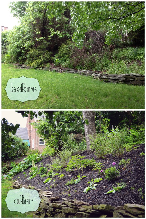 Yard Makeover Before and After Pictures | Life Is Sweet As a Peach