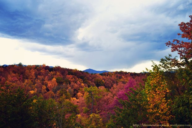 Fall Storm Brewing | Life Is Sweet As A Peach