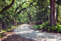 Eden Gardens State Park Trail | Life Is Sweet As A Peach