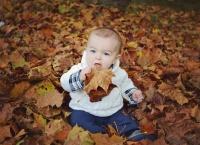 Mingo Creek Fall Family Photoshoot   Life Is Sweet As A Peach